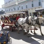 Horse-Drawn-Carriage-IMG_4767