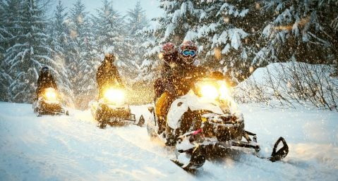 three snowmobiles riding through the woods