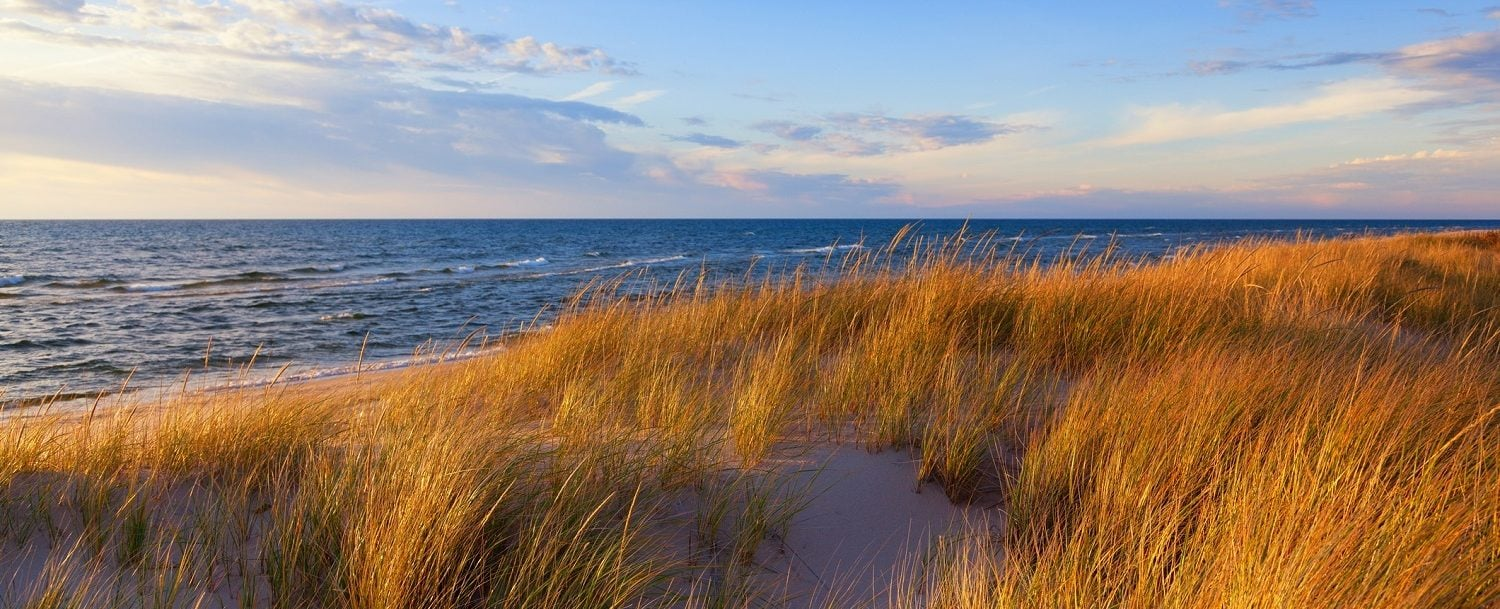 Dune Grass on Lake Michigan